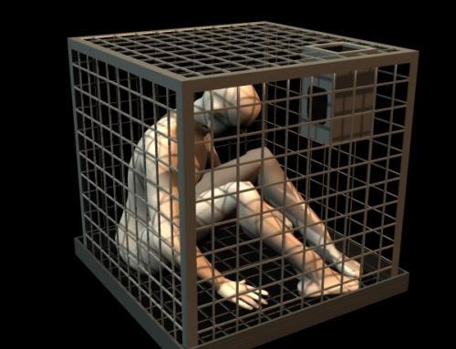 In nome della libertà noi umani siamo capaci di costruirci delle grandi gabbie prive di serratura.